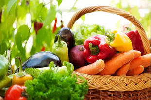 对于有机蔬菜 您究竟了解多少?